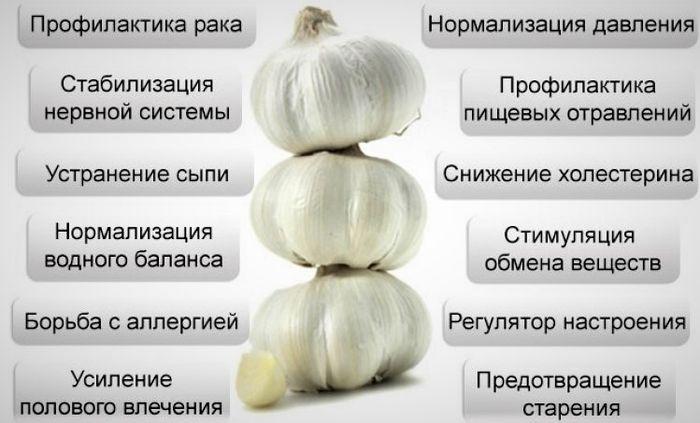 lechebnye-svojstva-chesnoka-4
